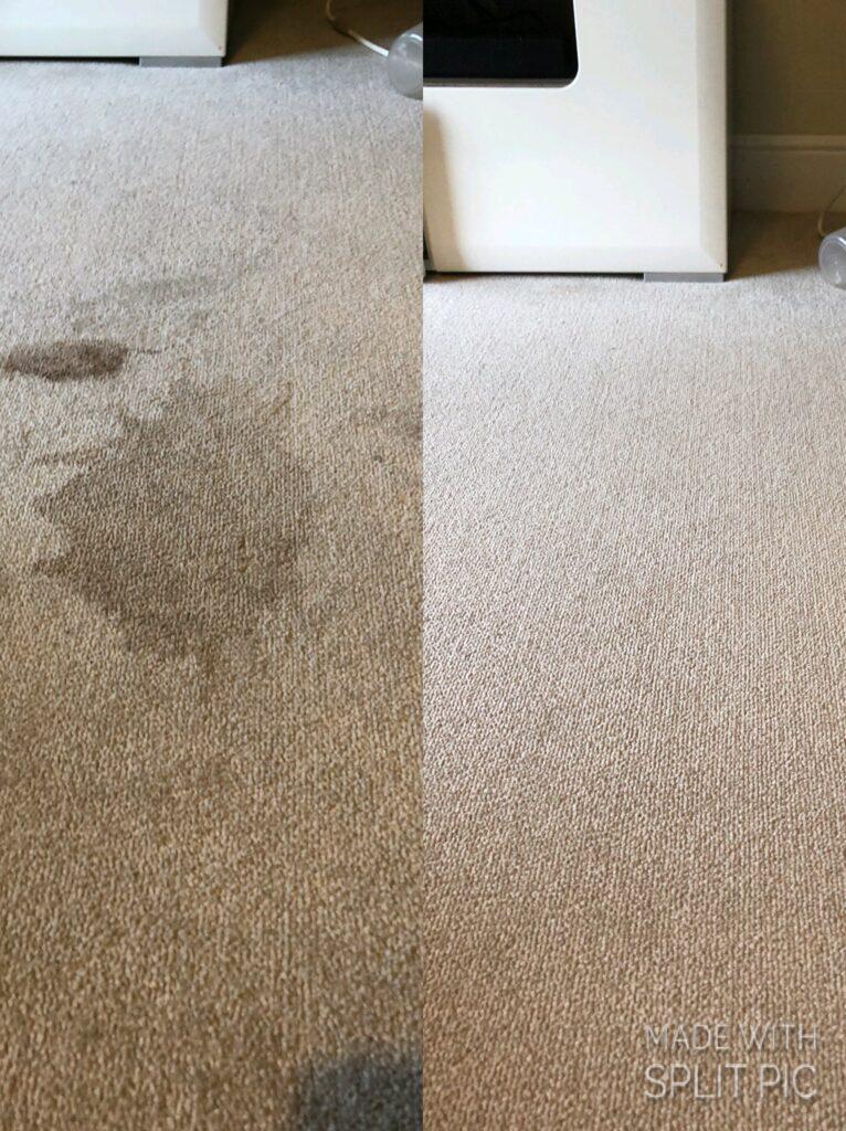 Professional Carpet cleaning near warwick